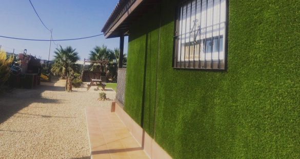 Artificial Grass for Walls